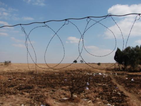 bird traps made by refugees - photo Heidenstrom